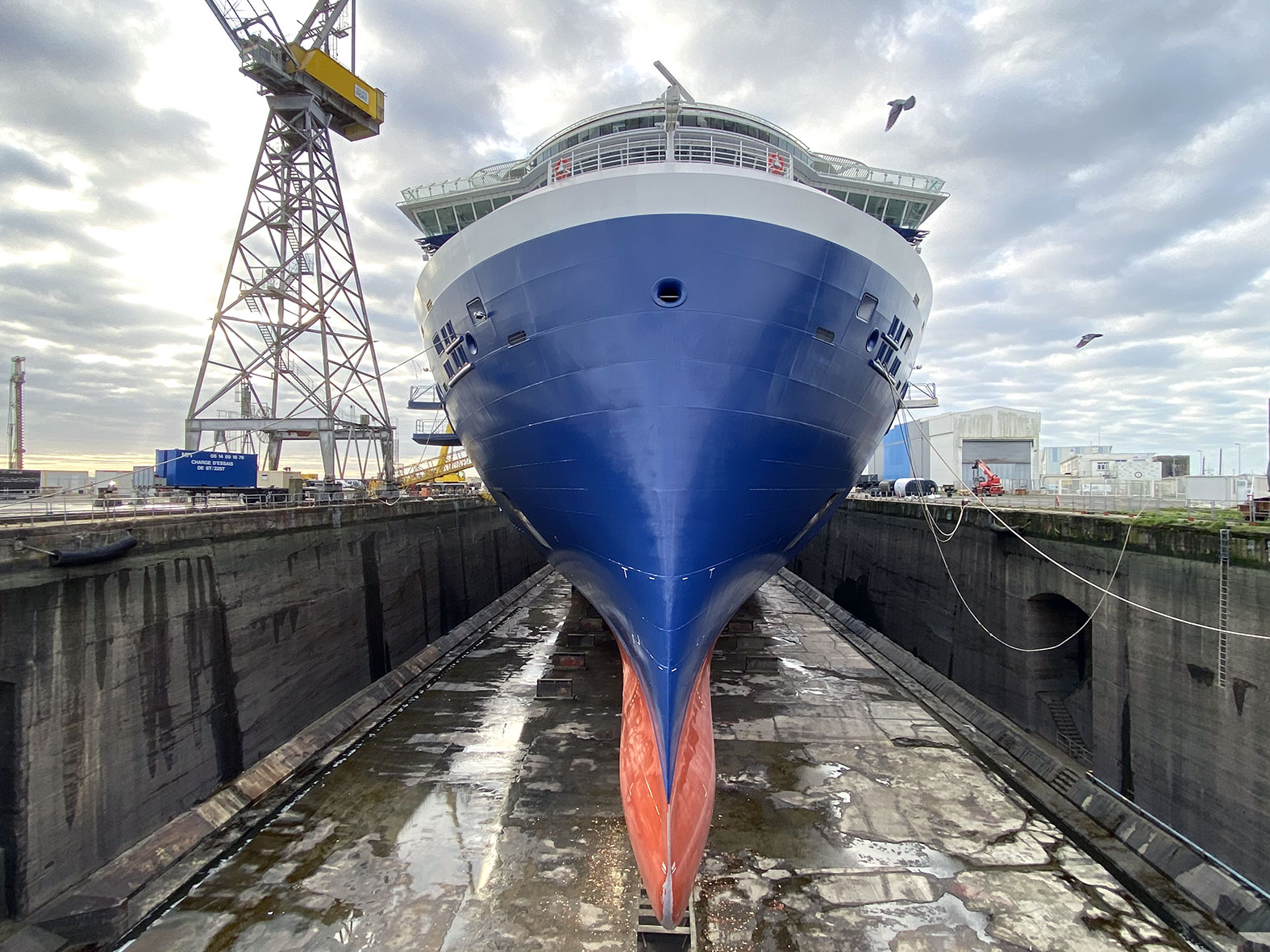 Nerone-apex-celebrity-cruises-9